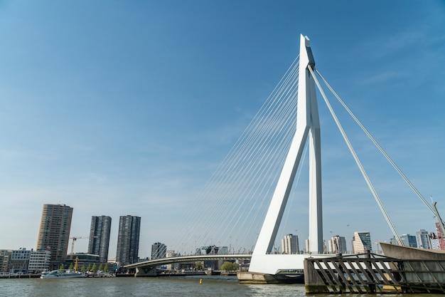 View of erasmus bridge in rotterdam