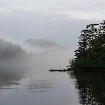 View of foggy coast, skeena-queen charlotte regional district, haida gwaii, graham island, british c