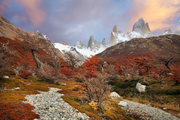 View on footpath and autumn painted hills in red color in patagonia, fitzroy mountain at sunset