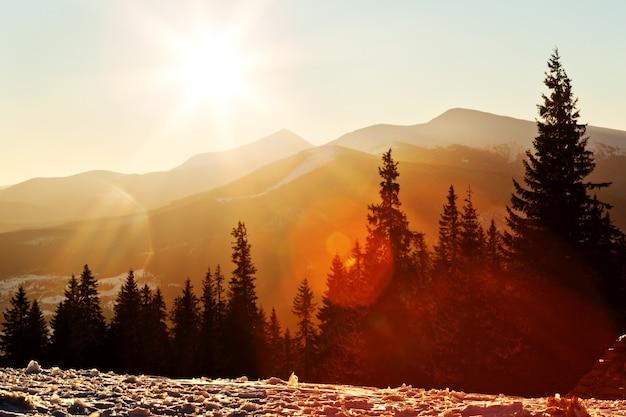 澄んだ冬の夜に沈む夕日を背景に、鬱蒼とした雪に覆われたモミの森に覆われた山脈の魅惑的な美しい風景を上から眺めます。ノーザンネイチャービューティーコンセプト