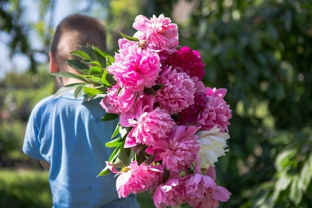 View from the back of little boy in his hands a large bouquet of beautiful peony flowers. open peony bud. pink peonies in the backyard