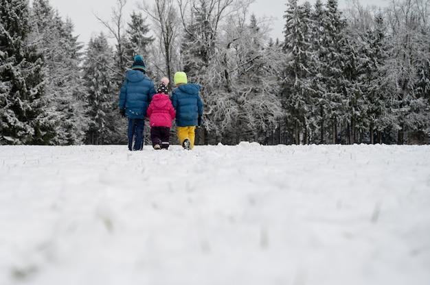 Вид сзади трех детей, братьев и сестер, в зимних костюмах, держась за руки, гуляя по красивой заснеженной природе.