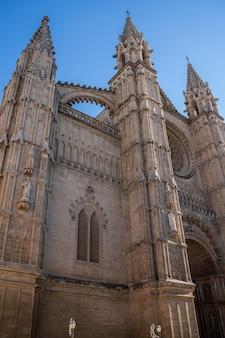 スペイン、パルマデマヨルカのサンタマリア大聖堂の下からの眺め