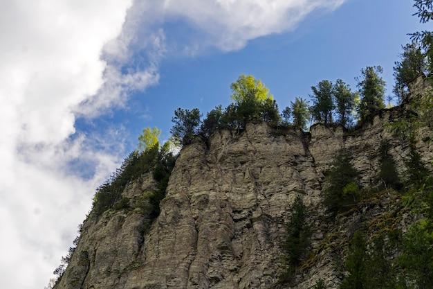 하늘을 배경으로 가파른 암석이 우거진 석회암 절벽을 아래에서 위쪽으로 봅니다.
