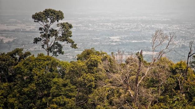 Вид с вершины горы бокор, кампот, камбоджа