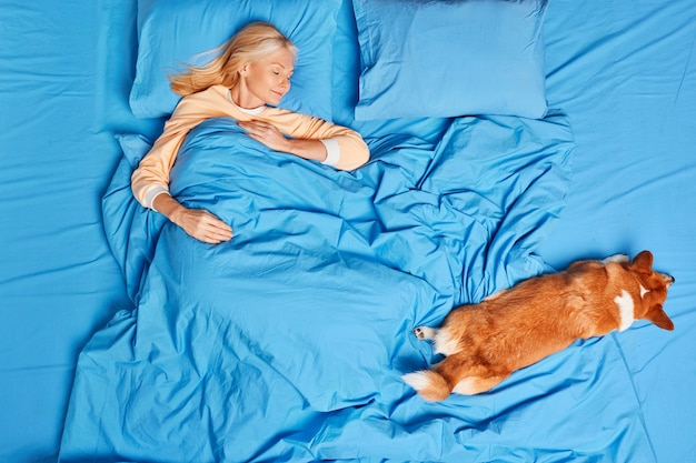 View from above of calm middle aged woman sleeps well under blanket rests with closed eyes near favorite dog sees sweet dreams enjoys relaxation and fresh bedclothes. serene domestic atmosphere