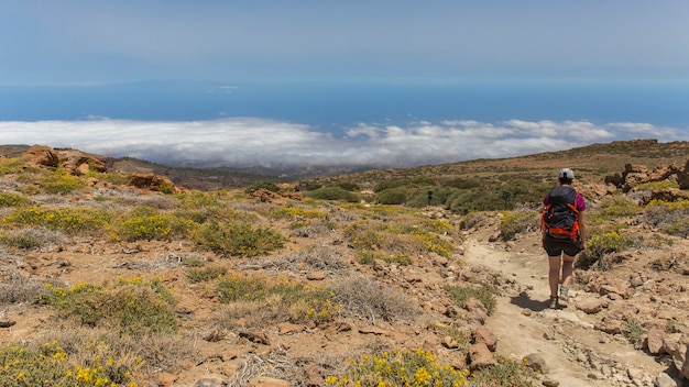 View from the guajara of the south of tenerife.