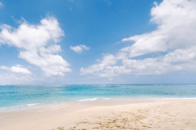 A view from a height of a tropical beach and waves breaking on a tropical golden sandy beach. the sea waves gently wind along the beautiful sandy beach