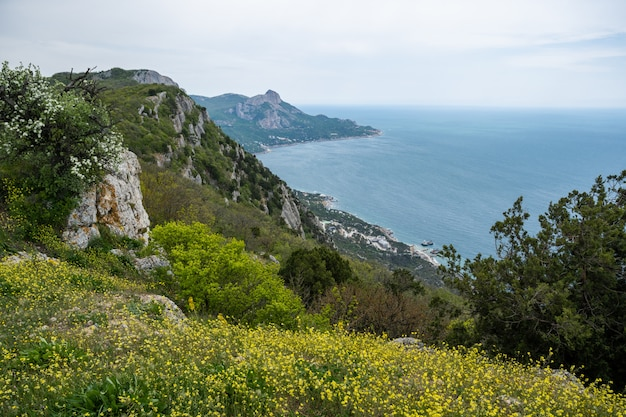 : view from laspi pass on laspi bay.