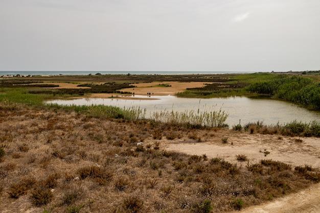 Mirador de la desembocadura、delta del llobreat、el prat、カタルーニャ、スペインからの眺め