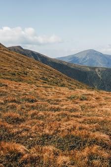 Hoverla 산에서 볼 수 있습니다. 대로 산입니다.