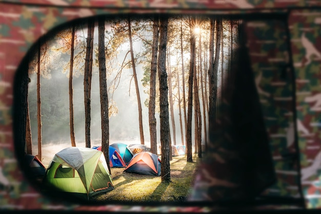 View from tent window with colorful of tent under pine tree under sunlight in the morning.