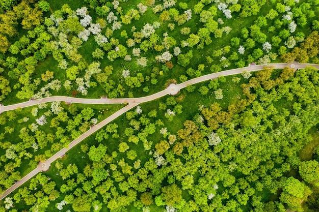 Вид с высоты на лошицкий парк в минске. извилистые дорожки в лошицком парке. беларусь. яблоневый сад.