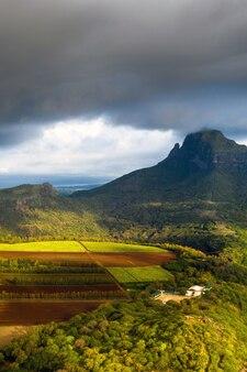 モーリシャス島にある播種畑の高さからの眺め。