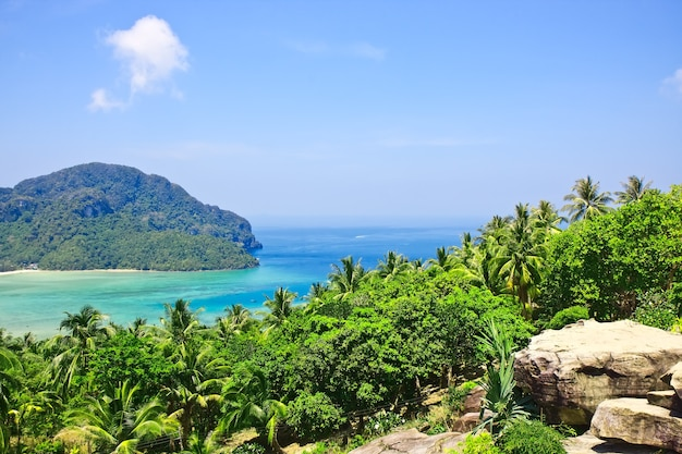 태국에서 피피섬의 가장 높은 지점에서 볼 수 있습니다. 아시아