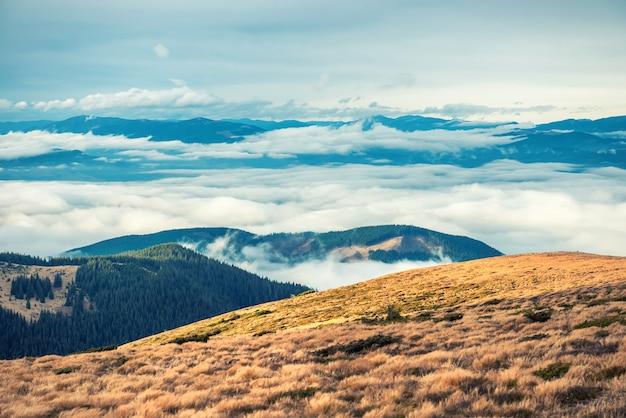 산에서 잔디와 푸른 구름이있는 아름다운 풍경을 볼 수 있습니다.