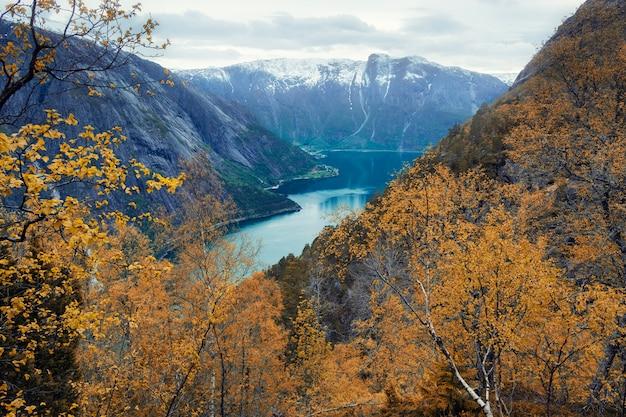 Вид сверху на симадалы фьорда в норвегии в пасмурную погоду осенью
