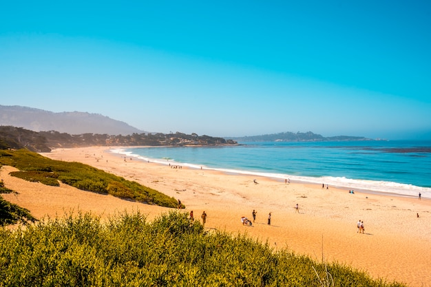 View from the top of monterey's beautiful beach in summer, california. united states
