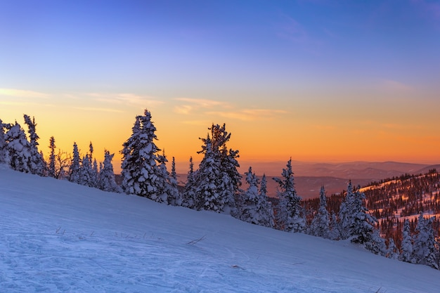 View from the top of the mountain to the sunset. the kemerovo region. ski resort sheregesh. winter landscape at sunset.