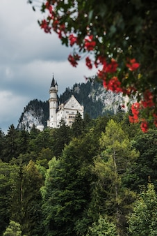 View from the village of hohenschwangau on the neuschwanstein castle. in the foreground red flowers
