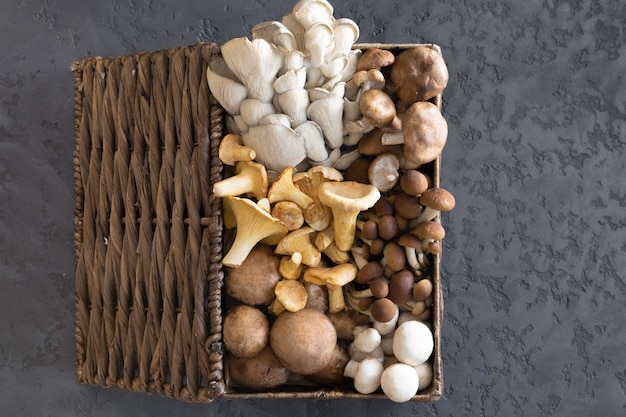 View from above of wicker basket with forest rare delicious edible mushrooms