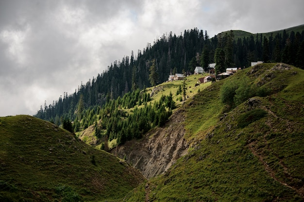 View of the hills covered with green forest and little living houses