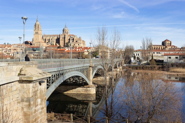 View of the historic city of salamanca with new cathedral and the iron bridge called enrique estevan over the tormes river.