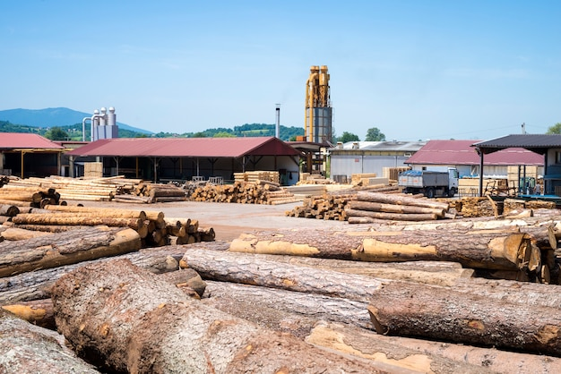 View of industrial sawmill factory for wood processing