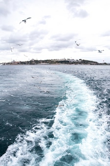 View of istanbul from a ship at cloudy weather, flying seagulls, waves and foam as a trace from the boat, turkey