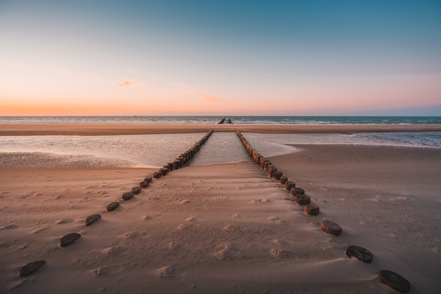 View of logs of wood covered under the sand on the beach captured in oostkapelle, netherlands