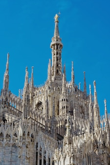View of the milan cathedral