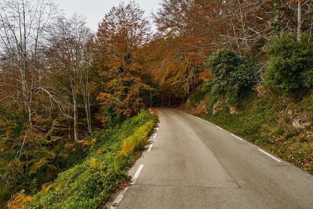 View of mountain road. asphalt roads, during autumn season.