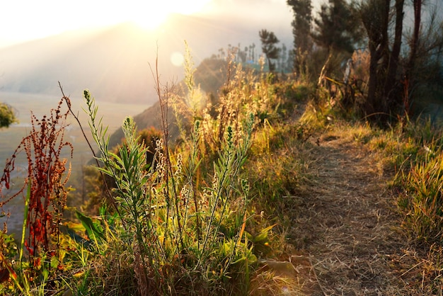 View of mountain with sunrise light, walkway along the line of mountain peak
