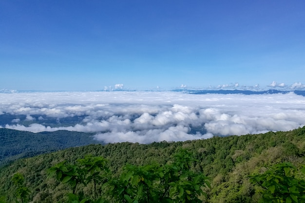 View of mountains covered by heavy fog at doi inthanon national park at chiang mai, thaila