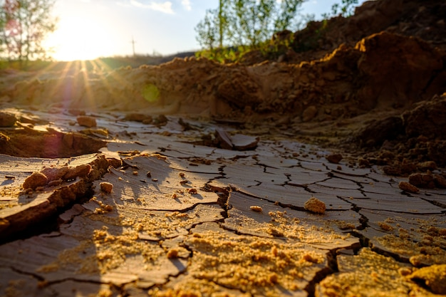View of a natural mosaic formed by cracks in dry clay soil in the rays of the setting sun