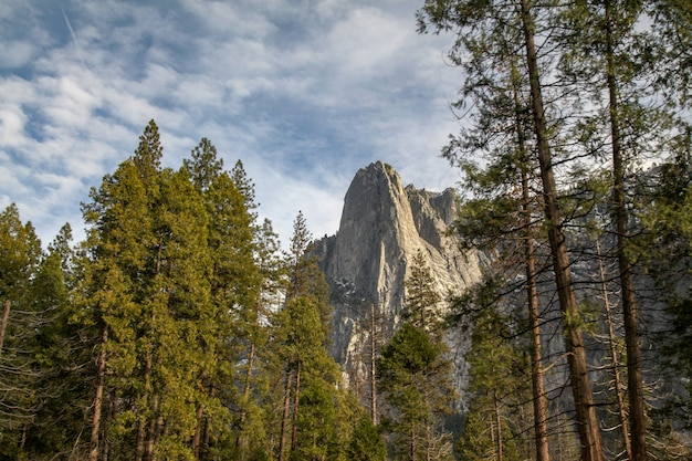 View of nature landscape at yosemite national park in the winter,usa. for nature background