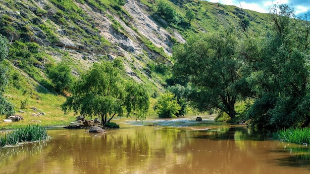 View of nature, valley with river, greenery, hill on the background, moldova