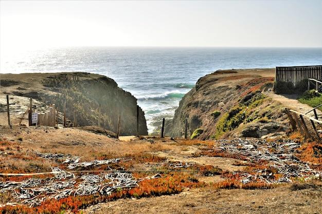 Vista vicino alla spiaggia di punta de lobos a pichilemu, cile in una giornata di sole