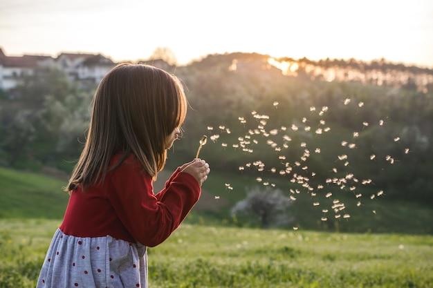 晴れた日に赤いブラウスを着て、フィールドでタンポポを吹いている子供のビュー