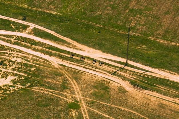 위에서 필드에 국가로의 보기. 높은 곳에서, 왕좌에서, 조감도에서 촬영합니다. 자연, 풍경, 도로, 경로.