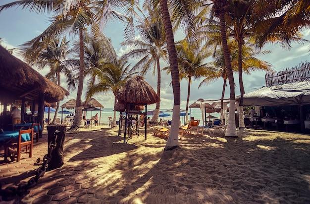 メキシコのプラヤデルカルメンビーチを垣間見ることができます。ヤシの木がたくさんあり、いくつかのバー小屋があります。
