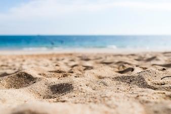 View of a sandy beach