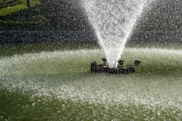 연못에 물을 분사하는 분수의보기 프리미엄 사진