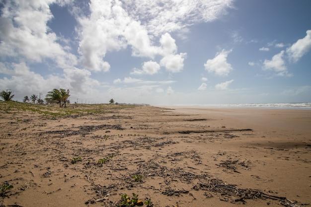 広い砂浜、ココナッツの木、沿岸の植生、劇的な曇り空のある広いビーチの眺め。