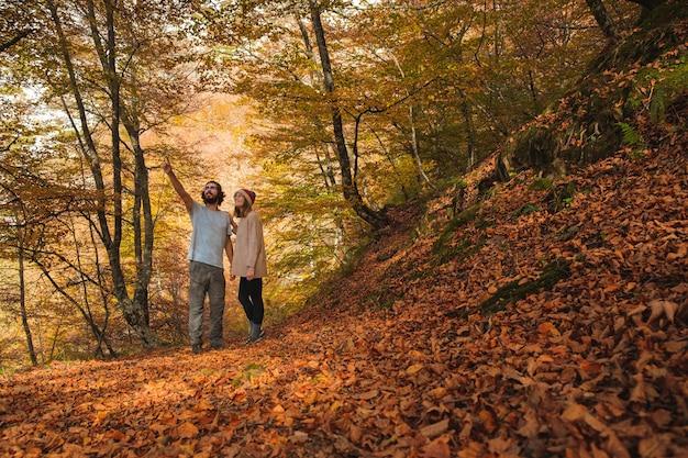 Вид молодой пары, любуясь лесом, покрытым листьями осенью