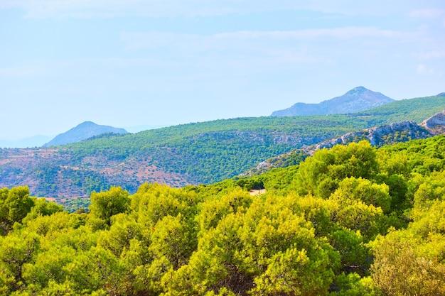ギリシャ、アギアマリーナ近くのアイギナ島の眺め。ギリシャの田舎の風景