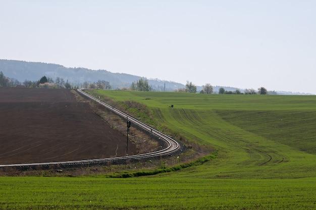 冬小麦の新芽と農地の眺め。