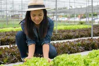 View of an young attractive woman harvesting vegetable