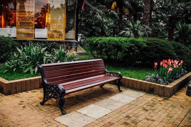 Вид на скамейку в общественном парке с кустами, пальмами и растительностью в городе.