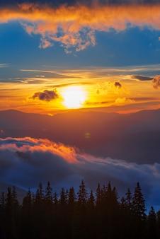 침엽수 림에서 숨막히는 새벽의 전망. 마법의 하늘 배경에 전나무 나무의 실루엣. 자연의 아름다움의 개념.